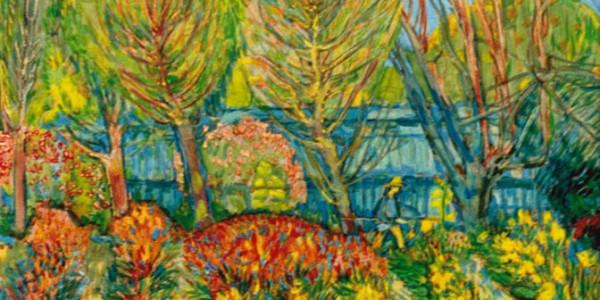 Provence (Blumenfelder)