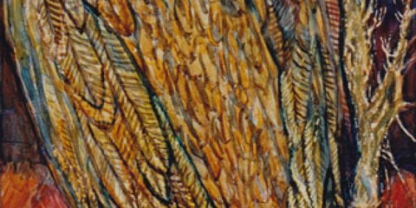 Mexikanischer Kondor