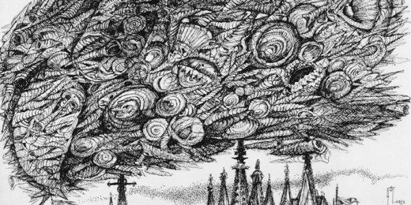 Die Muschelwolke