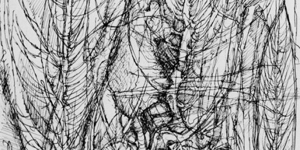 o.T. (Bäume)